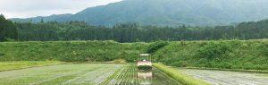 I Farm 愛ある農業